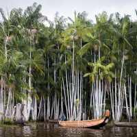Voyage en Guyane-Amazonie, entre fleuve St Laurent et rencontre Bushinenguée