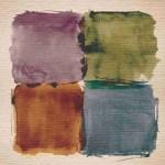 Case Hardin Colours Simple