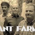 ANT FARM band photo