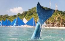 mermaid-swimming1