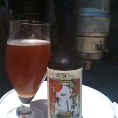 76. Dark Horse Brewing – Raspberry Ale