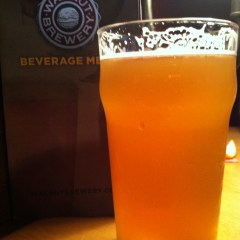 369. Walnut Brewery – Indian Peaks Pale Ale
