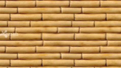 42.Bamboo