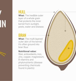 for a better understanding of whole grains let s take a closer look on what makes up a whole grain  [ 1200 x 662 Pixel ]