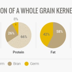 Grain Kernel Diagram 1997 Jeep Grand Cherokee Wiring Guide To Whole Grains Cook Smarts Here Is The Nutritional Contribution By Each Part Of