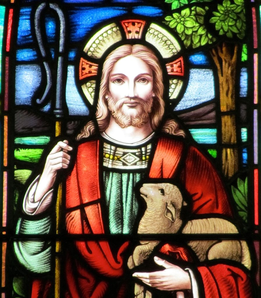 Even in Our Present Distress, the Good Shepherd Seeks Us Out
