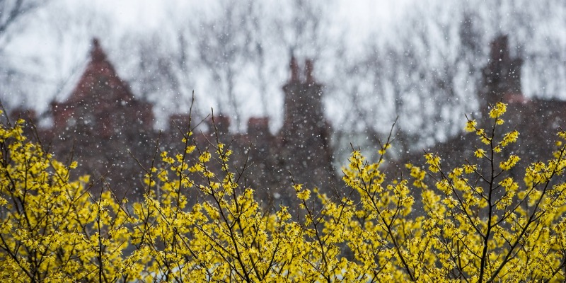 Spring May Start With Snow in New York Region