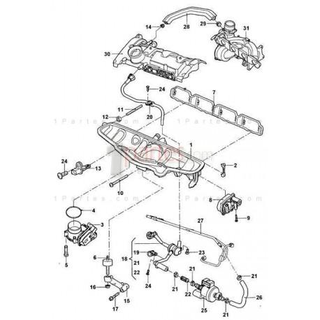 Manguera de vacío Volkswagen VW Jetta Passat Bora Vento B8