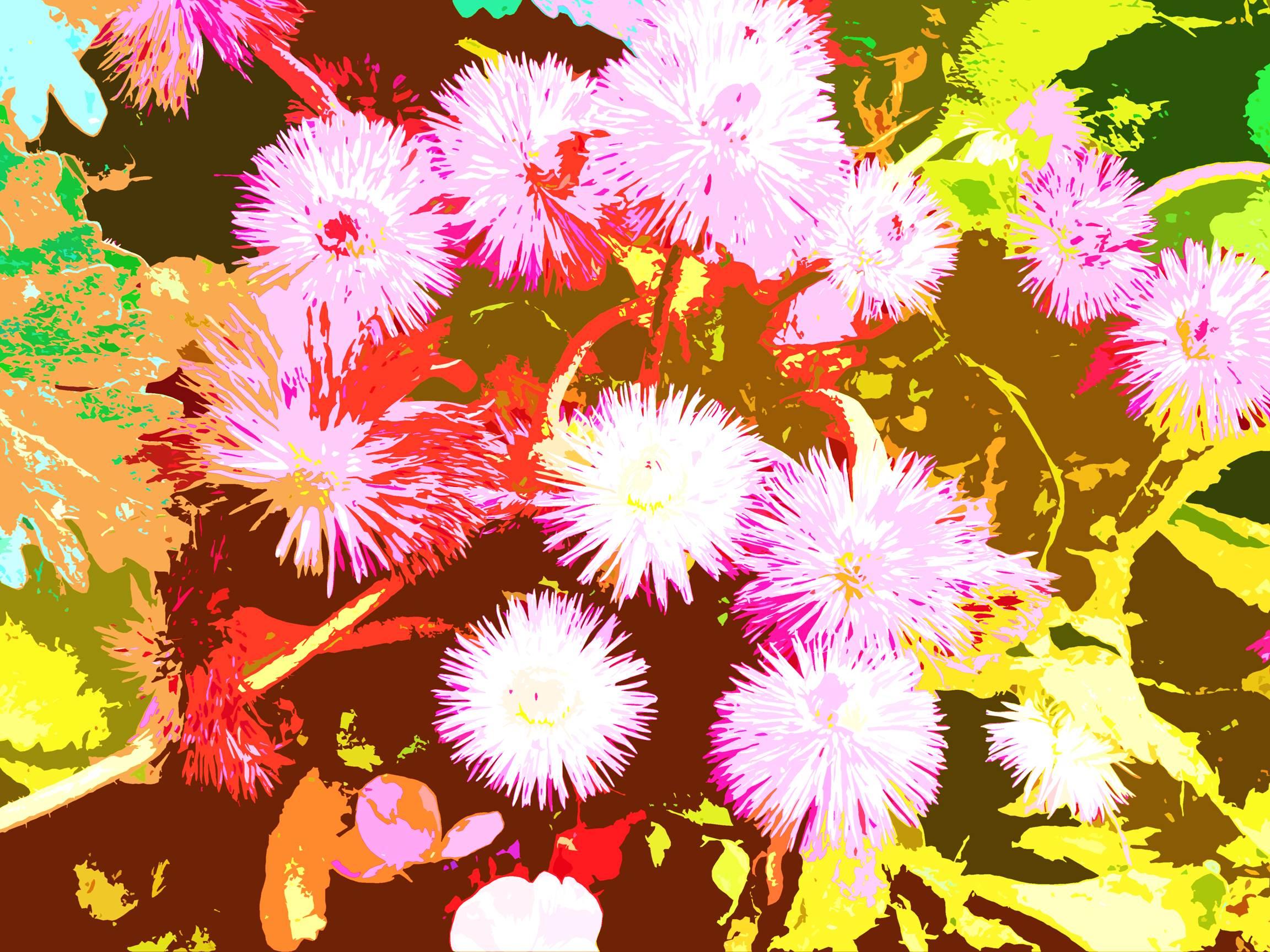 Flowers Fireworks 2