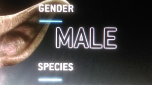 1 picture 1 word Male Gender