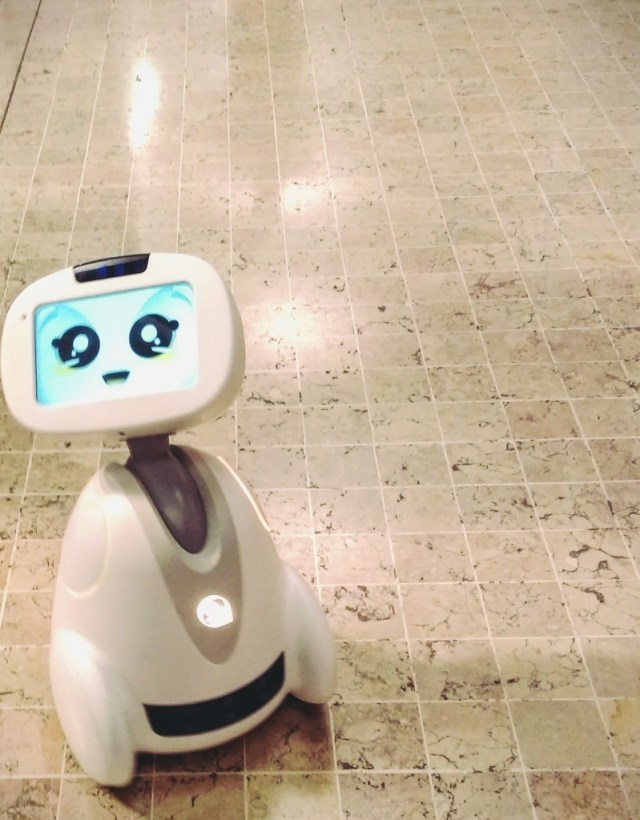 Buddy Robot Companion