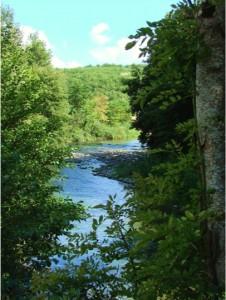 River Dream