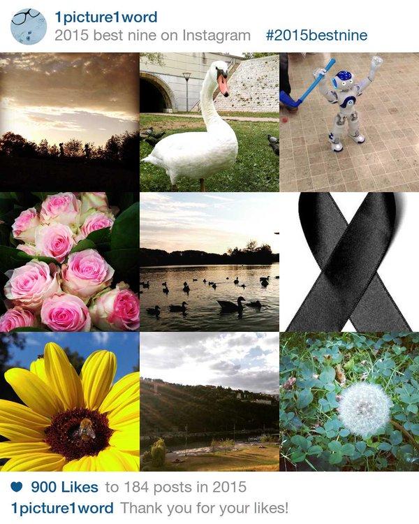 Nine Best 2015