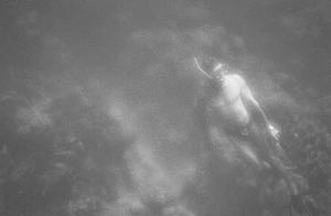 Snorkeling Dream