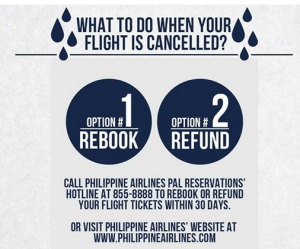 Philippine Airlines Cancelled Flights Due to Bagyong Ruby/ Typhoon Hagupit