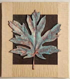 Big Leaf Maple 3