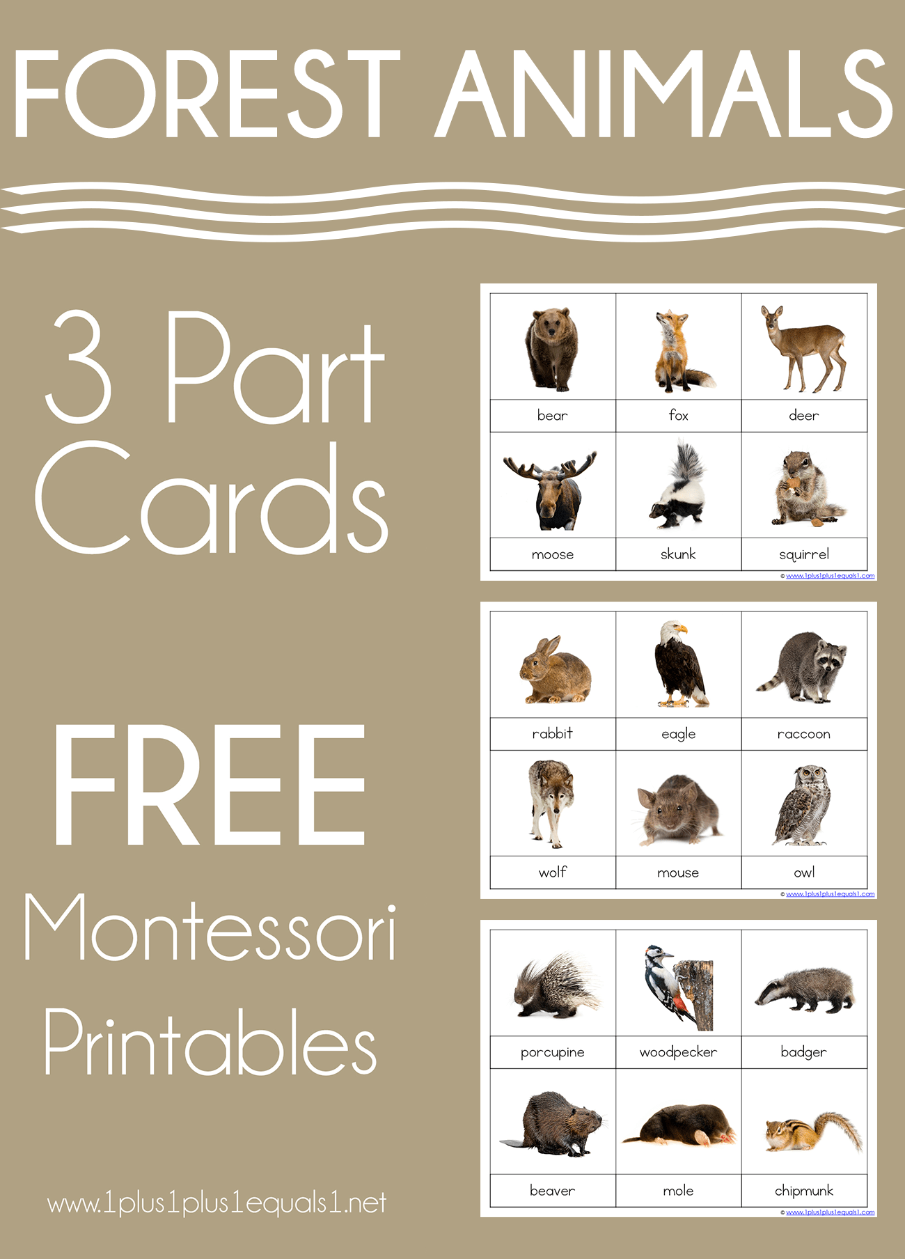 hight resolution of Forest Animals Montessori Printables – FREE 3 Part Cards - 1+1+1\u003d1