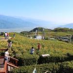 台湾・六十石山は台湾フリークの新しい絶景スポット!!