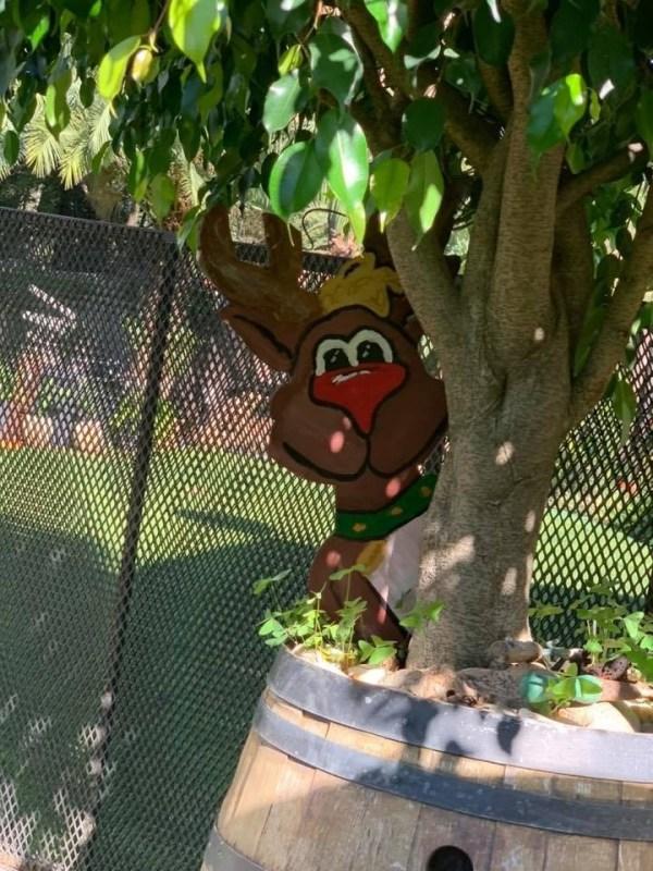 Peeking Reindeer3