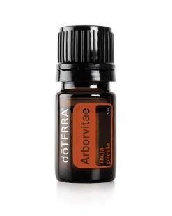 Arborvitae Essential Oil - DoTerra