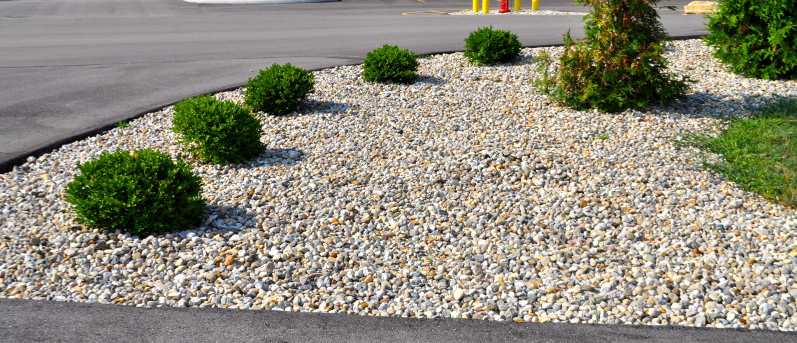 Grass Alternatives for Yard Landscaping  McCarty Mulch