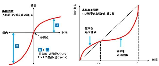 プロスペクト理論,価値関数,確率加重関数