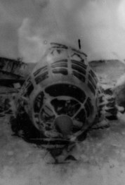 Fourth Marine Division troops overran the airfield on D+2.