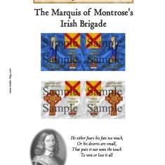 Montrose's Irish Brigade