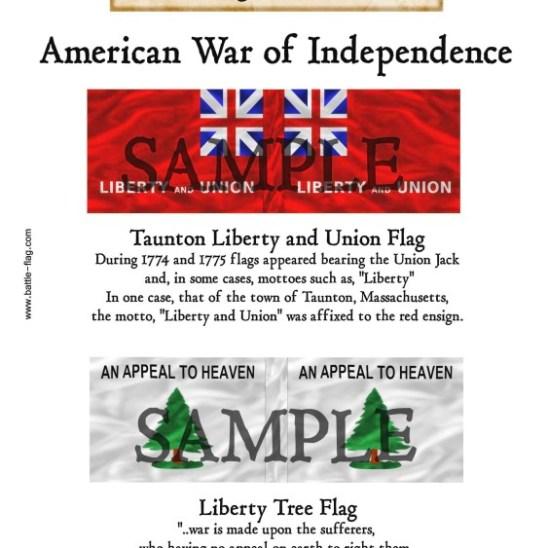 AWI/CA/005 Taunton Liberty and Union Flag, Liberty Tree Flag