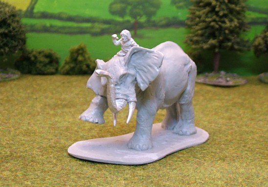 Numidian African untrained Elephant