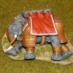 EL,N. Dead Armoured Elephant