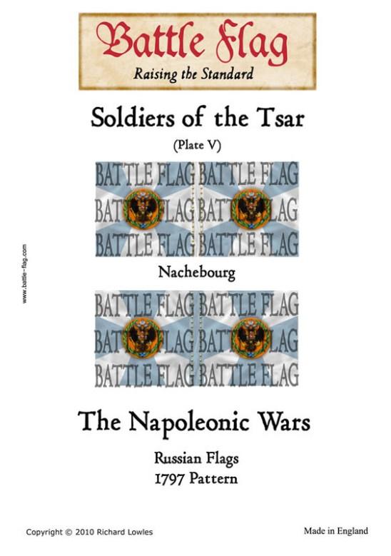 Musketeer Regiment Nachebourg(PlateV)