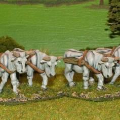SU34 Oxen.