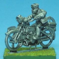 Motorbike and despatch rider