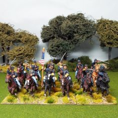 ACW Unit Packs
