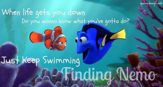 Keep swimming for teachers