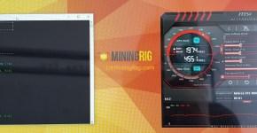 MSI GTX 1060 Armor 3GB Bitcoin Gold Mining Hashrate