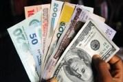 Naira Depreciation Expected As External Reserves Continue Fall