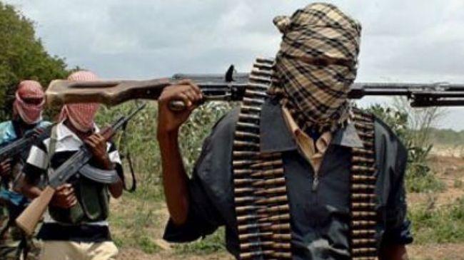 ISWAP kills five vigilantes in Borno attack