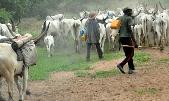 Bandits & herdsmen's mystery - Yakubu Mohammed