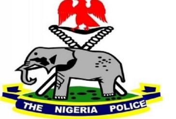 Lockdown Crisis: Police arrest 15 more suspected cultists in Ogun