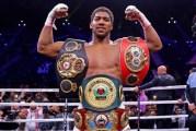 Heavyweight champion Joshua says he wants to beat contender Fury