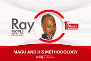 Magu and his methodology - Ray Ekpu