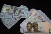 Naira weakens as forex turnover falls by 88%