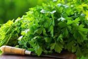 Health benefits of cilantro