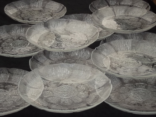Arcoroc France Canterbury Pattern Glass Dinner