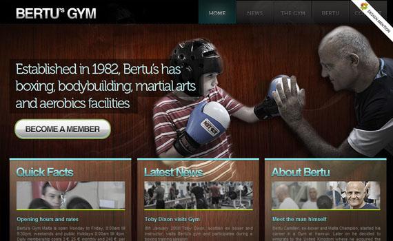 Bertus-gym-looking-textured-websites