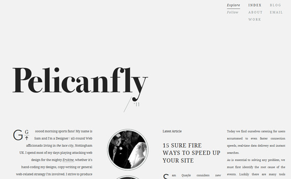 Pelicanfly-responsive-web-design-showcase