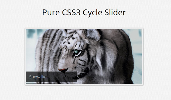 Cycle-slider-css3-text-effect-tutorials