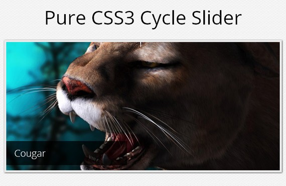 A Pure CSS3 Cycling Slideshow